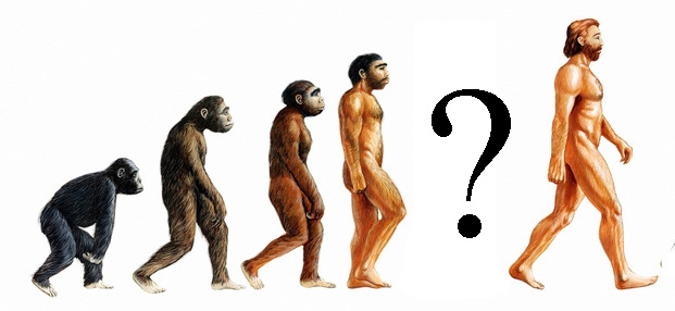 Image result for missing link human evolution